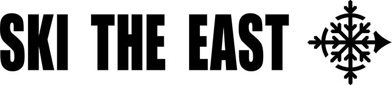 New-STE-logo.jpg